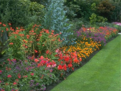 Transform your garden with the aid of peat moss, mulch & bark from A P Hayden Bark, Dublin & Kildare, Ireland